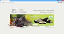 Link zu: Rimi's Schuh Service